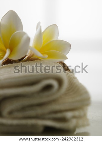 frangipani on the hand towel - stock photo