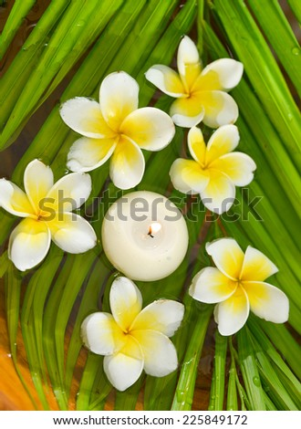 frangipani with candle on wet palm leaf - stock photo