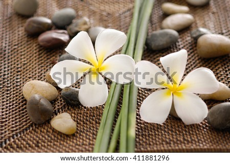 frangipani with grove, stones and mat    - stock photo