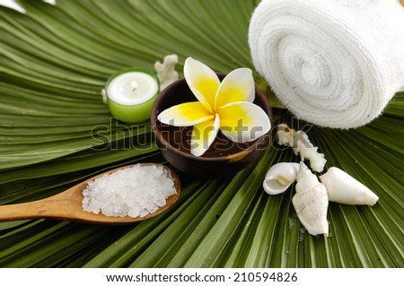frangipani with orchid with bowl with candle on green leaf - stock photo