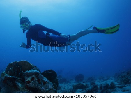 Free diver on the depth over coral reef