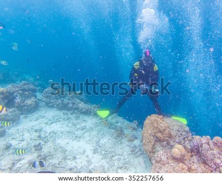 Free-diver with camera, Maldives - stock photo
