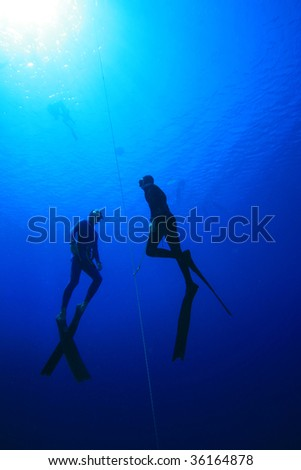 Free divers in training - stock photo