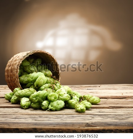 free space for beer and hop  - stock photo