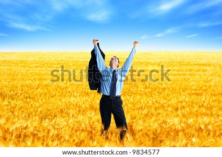 Free successful  businessman in the field under blue sky - stock photo