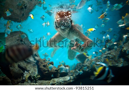 freedive along the brain coral - stock photo