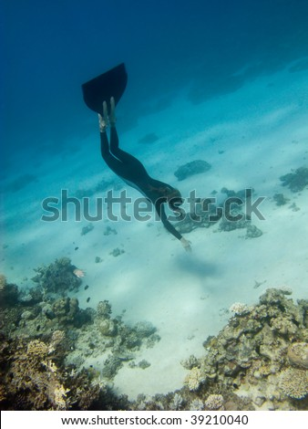 Freediver girl dives toward sand sea bottom near the coral reef in Red Sea - stock photo