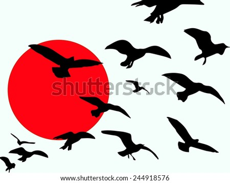 Freedom,Birds fly free as a symbol of freedom. - stock photo