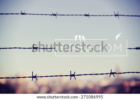 Freedom Motivational Inspiring Quote Landscape Barbed Stock Photo ...
