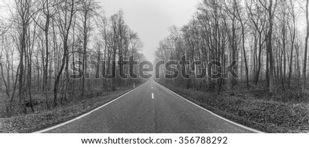 freeway in forest landscape in winter in Thuringia with leaveless trees