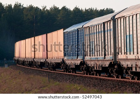 Freight train passing the forest