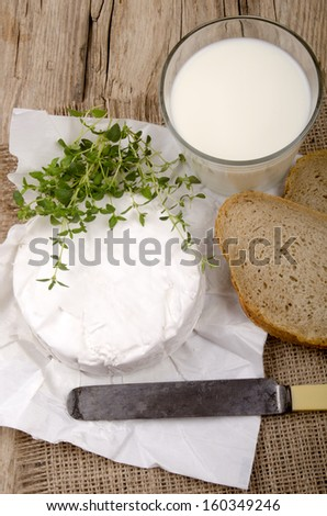 french brie camembert with thyme, bread and milk on a country house kitchen table