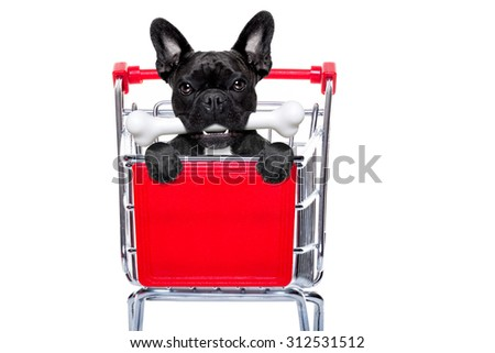 french bulldog dog inside a shopping cart trolley , behind  a blank  empty banner or placard, with a bone in mouth , isolated on white background - stock photo
