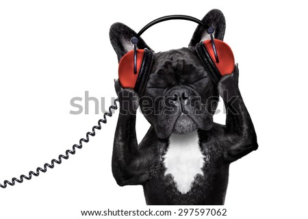 french bulldog dog  listening to oldies with headphones or earphones from a  retro    recorder, relaxing with eyes closed, isolated on white background - stock photo