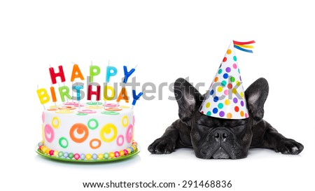 french bulldog with  happy birthday cake and candles ,a  party hat  ,eyes closed , isolated on white background - stock photo