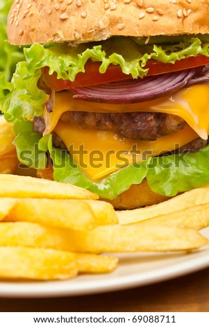 french fries and big double cheeseburger