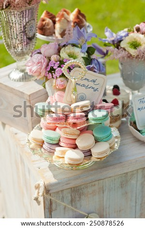 French macaroons on a cake stand . Candy bar on wedding.