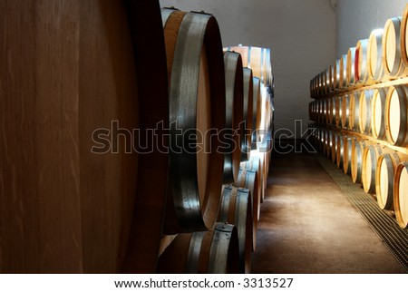 French Oak barrels with wine being stored in Pleisir de Merle wine cellar in Franschhoek, Western Cape, South Africa - stock photo