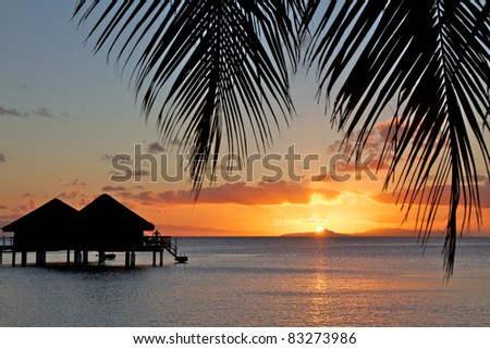 French polynesia islands palm tree sunset - stock photo