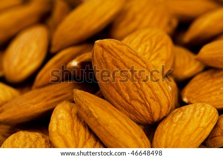 Fresh almonds arranged on the white background