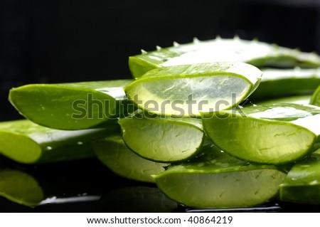 Fresh aloe vera on black - stock photo