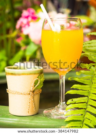 Fresh and cool orange juice in nature garden