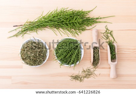 Fresh and dried field horsetail / horsetail / medicinal herb
