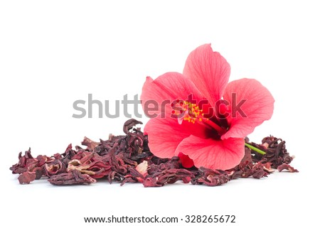 Fresh and dried hibiscus flowers isolated on white background - stock photo