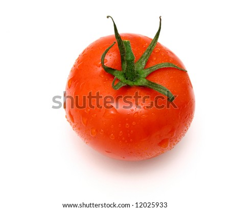 fresh and juicy tomato with water drops on it - stock photo