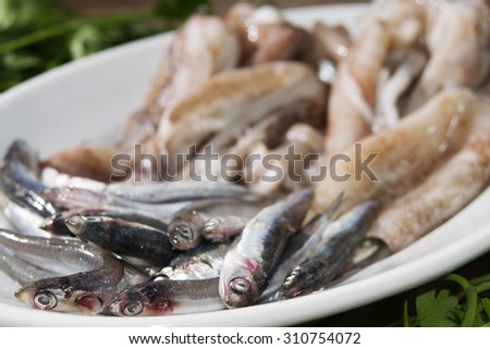 fresh and raw calamari and anchovies on the course dish - stock photo