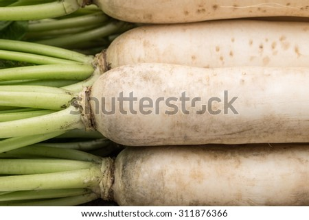 Fresh and raw daikon or white radishes for food ingredient background