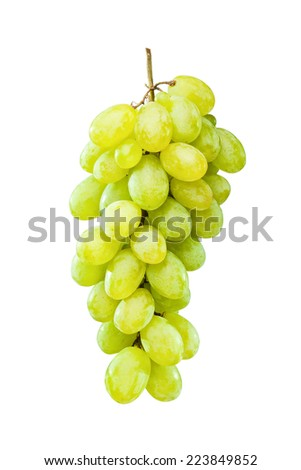 Fresh and ripe green grapes hanging against white background - stock photo