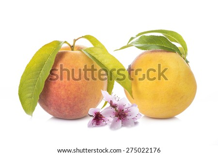 Fresh and ripe peaches with leaves and flowers isolated on a white background