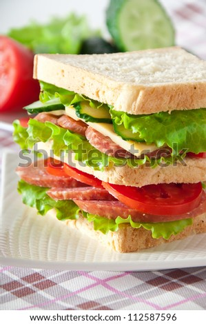 Fresh and tasty sandwich on a white plate
