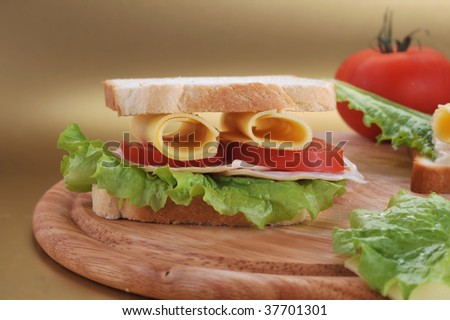 fresh and tasty sandwich ready to eat