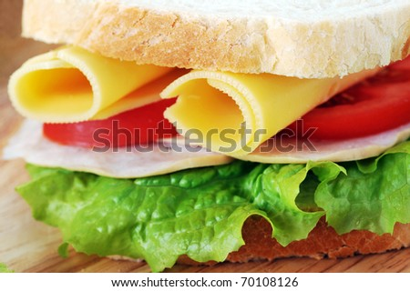 fresh and tasty sandwich ready to eat - stock photo