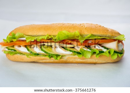 Fresh and tasty sandwich with ham and vegetables - stock photo