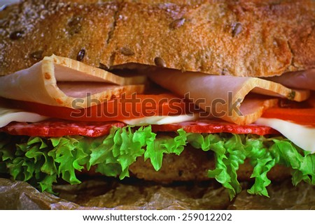Fresh and tasty sandwich with ham and vegetables close up - stock photo