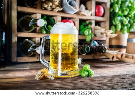 Fresh apple beer and ingredients in wooden box - stock photo