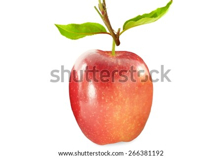 fresh apple fruit with leaves in pure white background
