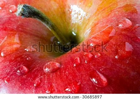 fresh apple with drop dew - stock photo
