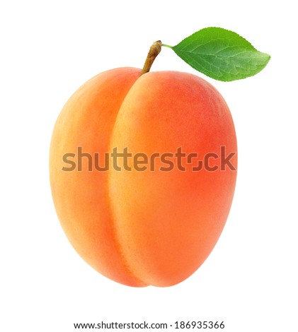 Fresh apricot with leaf isolated on white - stock photo