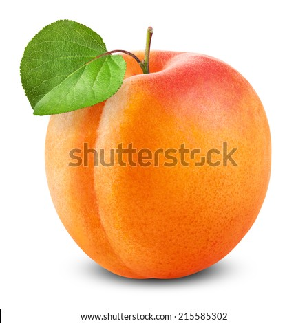 Fresh apricot with leaf on white background. Clipping Path - stock photo