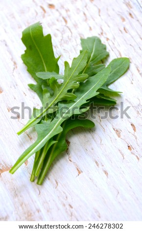 Fresh arugula / salad rocket / roquette / rucola leaves - stock photo