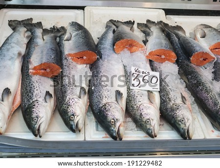Fresh Atlantic Salmon (Salmo salar) on a market display, label contains no trademarks - stock photo