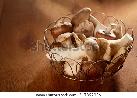 Fresh autumn harvest of King Oyster mushrooms, Pleurotus eryngii, collected in a rustic wire basket and displayed over a soft brown background with copyspace to the side - stock photo