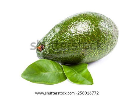 Fresh avocado fruit with leaves isolated on white background. - stock photo
