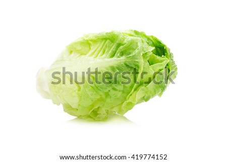 fresh baby cos lettuce on white background.