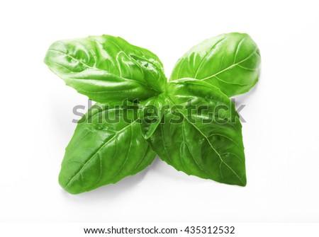 Fresh basil leaves on white background - stock photo