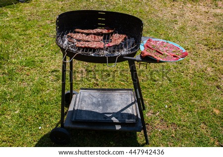 Fresh bbq meat steak on a grill in the park. Raw juicy meat steak seasoned with pepper and rosemarine - stock photo